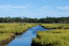 Pantanos y humedales de la orilla del jersey Foto de archivo