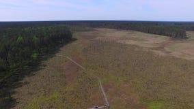 Pantanos y pantanos, reserva de Obara, cantidad aérea almacen de metraje de vídeo