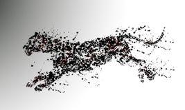 Pantera de las partículas Foto de archivo libre de regalías