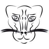 Pantera en el fondo blanco libre illustration