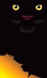 A pantera Eyes o fundo Ilustração Royalty Free