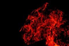 Pantera na ogieniu na czarnym tle Zdjęcia Stock