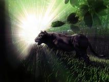 Pantera negra en el bosque stock de ilustración