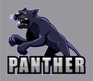 panther Stock Afbeelding
