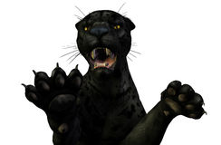 Panther Attacks - clipping path included Royalty Free Stock Photo