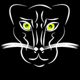 Panther on black background Royalty Free Stock Image