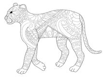 Panther coloring vector for adults Stock Images