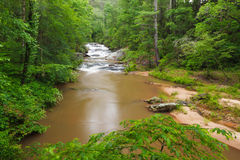 Panther Creek Stock Images