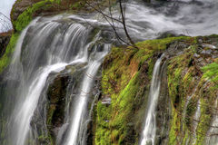 Panther Creek Falls Royalty Free Stock Image
