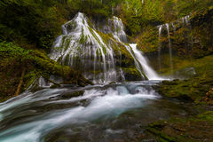 Panther Creek Falls. In Gifford Pinchot National Forest Trail  137 in Washington State Stock Image