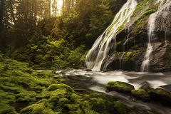 Panther Creek Falls Royalty Free Stock Photos
