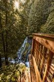 Panther Creek Falls royalty free stock photo