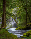 Panther Creek Falls. A view of  beautiful upper and lower Panther Creek Falls in Washington State Stock Photo