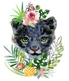 Panther cub. wild animals watercolor illustration