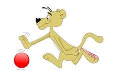 Panther, der einen Ball spielt Stockbild