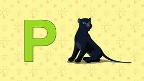Panther. English ZOO Alphabet - letter P. Animation English ZOO alphabet. Letter P and word Panther. 2D handmade animation vector illustration