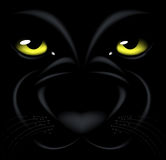 Panther eyes. Beautiful black background with yellow eyes and muzzle Panthers Royalty Free Stock Photos