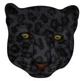 Panther face Illustration. This is a panther face Illustration with clipping path attached Royalty Free Stock Photo