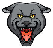 Panther Head Mascot Stock Photos