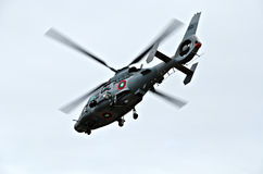 Panther helicopters Royalty Free Stock Photos