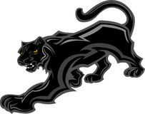 Panther Mascot Body Graphic. Graphic Mascot Image of a Walking Panther Body Royalty Free Stock Photography