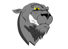 Panther Mascot. The head of a panther with a bit of an attitude. Perfect for a team mascot Stock Photos