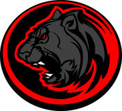 Panther Mascot Head Graphic. Graphic Mascot Image of a Black Panther Body Stock Photo
