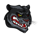 Panther mascot, team label design Royalty Free Stock Photo