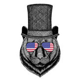 Panther Puma Cougar Wild cat wearing cylinder top hat and glasses with usa flag United states of America flag Stock Photography