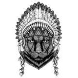 Panther Puma Cougar Wild cat Wild animal wearing indian hat Headdress with feathers Boho ethnic image Tribal illustraton Stock Photography