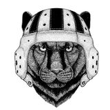 Panther Puma Cougar Wild cat Wild animal wearing rugby helmet Sport illustration Stock Photo