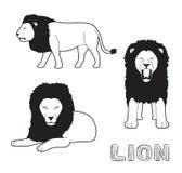 Panthera Lion Cartoon Vector Illustration Monochrome Royalty Free Stock Photos