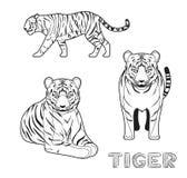 Panthera Tiger Cartoon Vector Illustration Monochrome Image stock