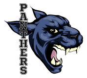 Panthers Mascot. An illustration of a cartoon panther sports team mascot with the text Panthers Stock Photo