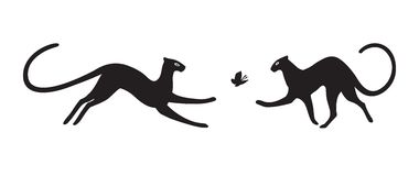 Panthers on white background. Vector isolated. Royalty Free Stock Photos