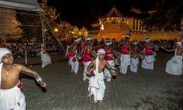 Pantherukaruwo (Tamerine-Spelers) presteert tijdens Esala Perahera in Kandy in Sri Lanka royalty-vrije stock foto