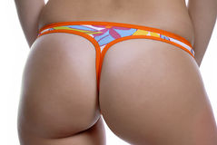 Panties Stock Image