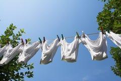 Panties hanging Royalty Free Stock Photography