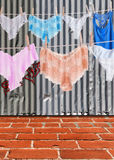 Panties in the Hood Royalty Free Stock Photo