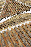 Pantiled roofs Stock Photo