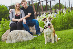 Panting terrier with happy couple in background royalty free stock photography