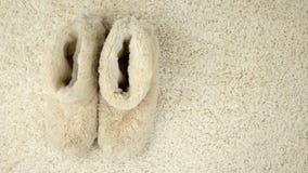 Pantoffel bewegen sich entlang den Teppich bequemlichkeit stock footage