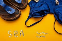 pantofole della spiaggia e del costume da bagno Fotografia Stock