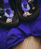 pantofole della spiaggia e del costume da bagno Immagini Stock Libere da Diritti