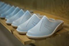 Pantofole svedesi classiche immagine stock libera da diritti