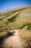Pantokrator-Berg auf Korfu-Insel, Griechenland stockbild