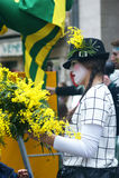 Pantomime avec la mimosa Photos libres de droits