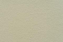 Pantone τσιπ που ντύνονται στερεά μικρός τοίχος σύστασης φυτών ανασκόπησης Στοκ φωτογραφίες με δικαίωμα ελεύθερης χρήσης