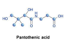 Pantothenic acid vitamin B5 Stock Photography