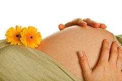 Panza embarazada con las flores Imagen de archivo